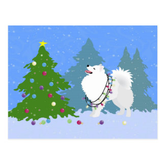 Amerikanischer Eskimohund, der Weihnachtsbaum Postkarte