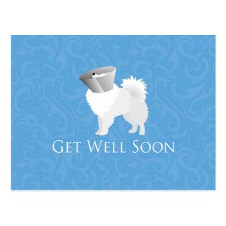 Amerikanischer Eskimohund erhalten Brunnen-bald Postkarte