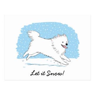 Amerikanischer Eskimohund ließ es schneien Eskie Postkarte