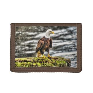 Amerikanischer kahler Adler auf Klotz-Tier-Foto