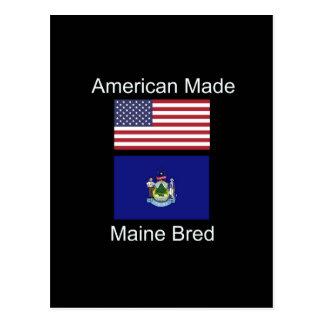 """""""Amerikanisches geborenes. Maine züchtete"""" Flaggen Postkarte"""