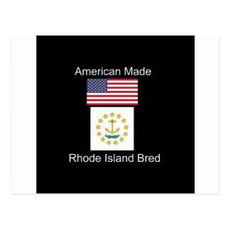 """""""Amerikanisches geborenes. Rhode Island züchtete"""" Postkarte"""