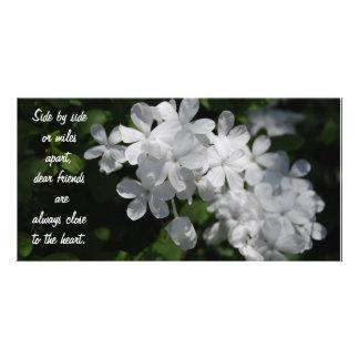 Amis, fleurs blanches photocarte