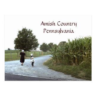 Amisches Land-Pennsylvania PA Postkarte
