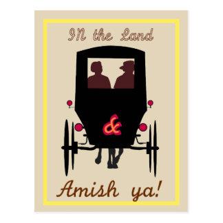 Amisches Land Postkarte