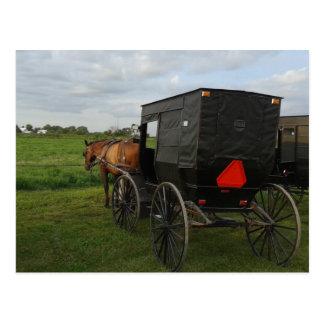 Amisches Pferd und Buggy am Sonnenuntergang Postkarte