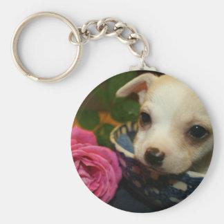 Amour rose de fleur de chiwawa porte-clé rond