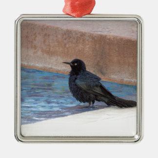 Amsel, die ein Bad im Pool nimmt Quadratisches Silberfarbenes Ornament