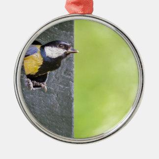 Amselelternteil im Loch des Nistkastens Rundes Silberfarbenes Ornament