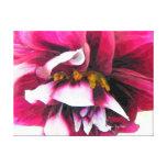 Amusement de fleur de dahlia toiles tendues