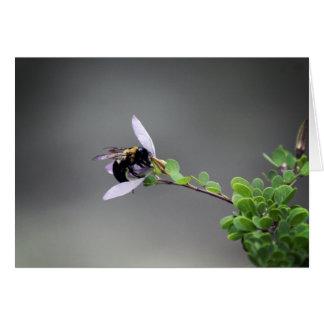 An zweiter Stelle in der Bienen-Reihe Grußkarte