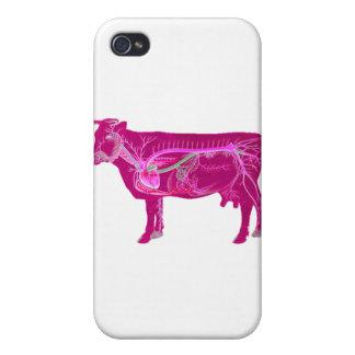 Anatomische niedliche Kuh Schutzhülle Fürs iPhone 4
