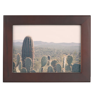 Andenken-Kasten Arizona-Kaktus-| Erinnerungsbox