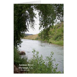 Animas-Fluss Karte