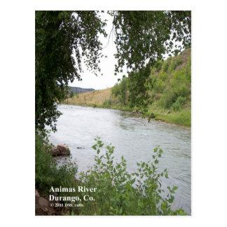 Animas-Fluss Postkarte
