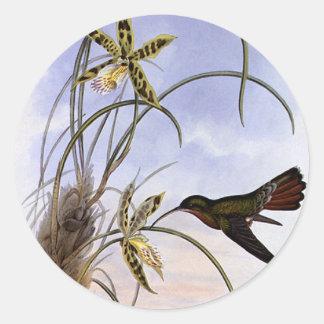 Animaux victoriens vintages, orchidée d'oiseau de adhésifs ronds