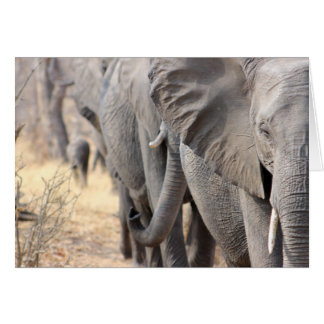 Anmerkungskarte der afrikanischen Elefanten Karte