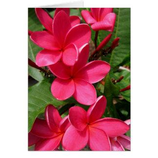 Anmerkungskarte - rosa Plumerias Karte