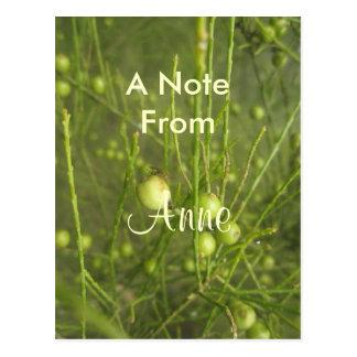 Anne Postkarten