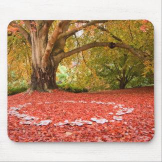 Anneau féerique de belle d'automne nature d'automn tapis de souris