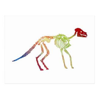 anoplotherium Skelett Postkarten