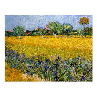 Ansicht von Arles mit Iris-Vincent van Gogh-Farbe Postkarte