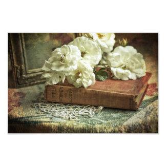 Antike weiße Rosen Photographien