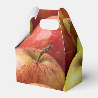 Äpfel - reif u. bunt geschenkschachtel