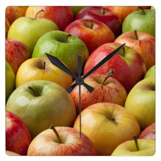 Äpfel - reif u. bunt quadratische wanduhr