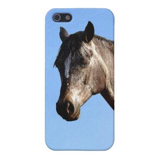 Appaloosa Etui Fürs iPhone 5