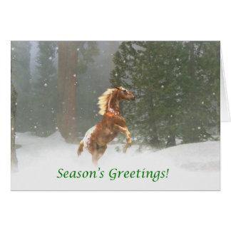 Appaloosa-Pferd der Jahreszeit die Grüße Grußkarte