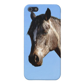 Appaloosa Schutzhülle Fürs iPhone 5