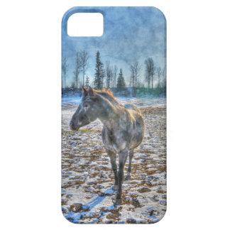 AppaloosaStallion im Schnee-Pferd - pferdeartige Hülle Fürs iPhone 5