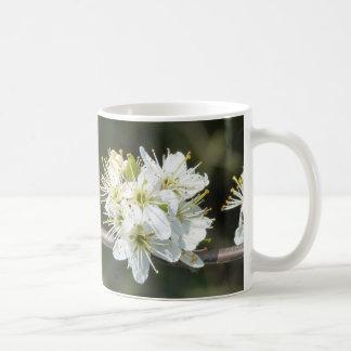 Apple blühen kaffeetasse