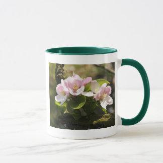 Apple blühen tasse