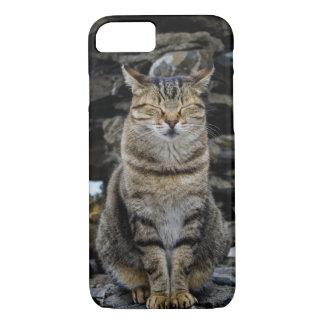 Apple iPhone 7 Fall mit italienischer Katze iPhone 7 Hülle