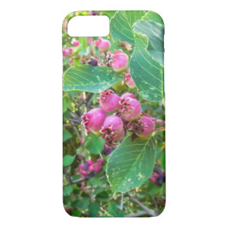 Apple iPhone 7, Saskatoons Telefon-Kasten iPhone 7 Hülle