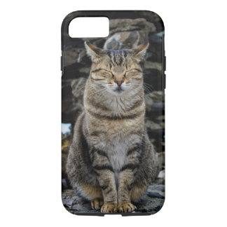 Apple iPhone 7 starker Fall mit Cinque Terre Katze iPhone 7 Hülle