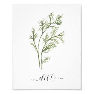 Aquarell-botanischer Kraut-Druck-Dill Fotodruck