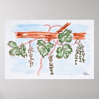 Aquarell der Reben mit Trauben | Frankreich Poster
