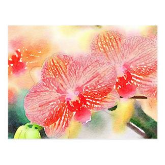 Aquarell-Orchideen Postkarte