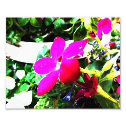 Aquarelle de la fleur IV Digital Tirage Photo