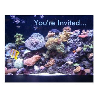 Aquarium-Postkarten-Einladung Postkarte