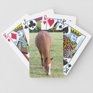 Arabische Brown-Pferdefronten-stehende perfekte Bicycle Spielkarten