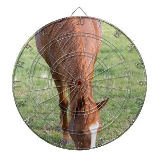 Arabische Brown-Pferdefronten-stehende perfekte Dartscheibe