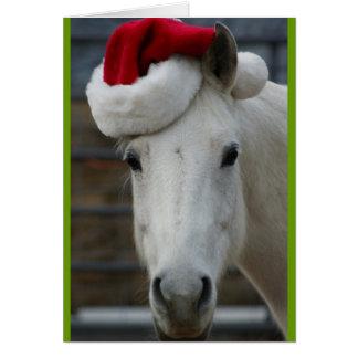 Arabisches Pferd mit Weihnachtsmannmütze Karte