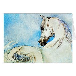 Arabisches Pferdeporträt in der blauen leeren Karte