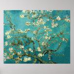 Arbre d'amande de floraison par Van Gogh Affiches