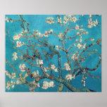 Arbre d'amande de floraison par Vincent van Gogh Poster