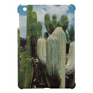 Arizona-Kaktus iPad Mini Hülle